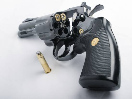 Smith & Wesson Python