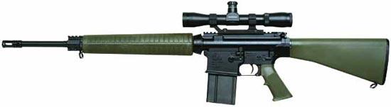 AR-10A4