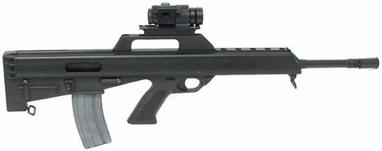 Bushmaster M17S с установленным коллиматорным прицелом