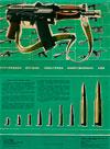Стрелковое оружие советских вооруженных сил
