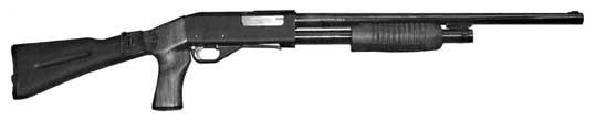ИЖ-81Фокстерьер
