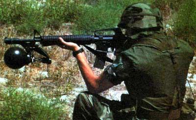 RAW установленный на винтовке М16