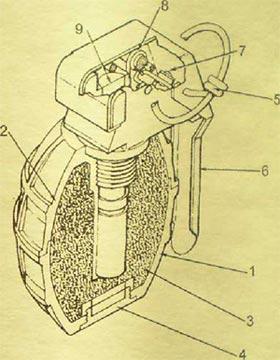 устройство гранаты PRB Nr 446 1. нижняя деталь корпуса гранаты; 2. верхняя деталь корпуса гранаты; 3. заряд ВВ; 4. пробка корпуса; 5. предохранительная чека с кольцом; 6. предохранительная скоба; 7. ударник; 8. боевая пружина; 9. капсюль-воспламенитель.
