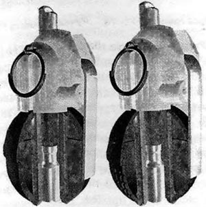 ПУИ-РГН (слева) и ПУИ-РГО (справа)