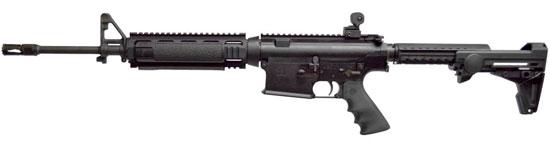 AR-10 LE