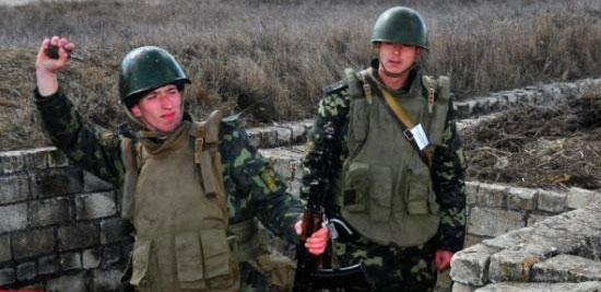 В Сергиевом Посаде разработали гороховые гранаты