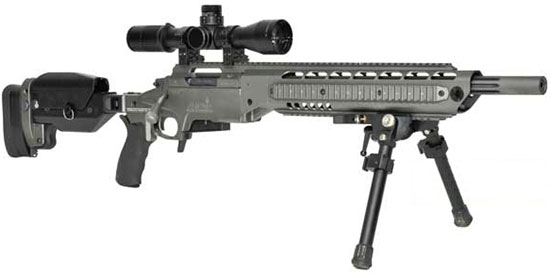 Ashbury SPR-308 Precision Rifle