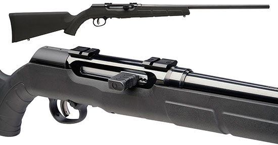 Savage Arms А17