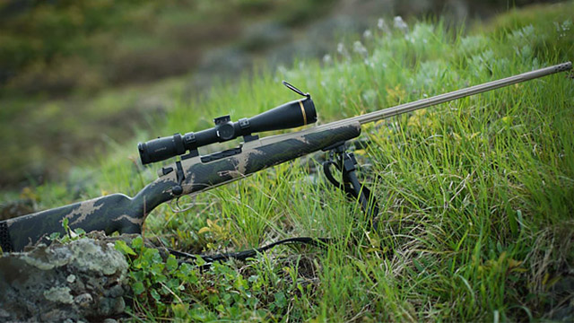 Weatherby Mark V Backcountry и Mark V Carbonmark