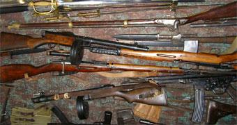 Госдума может упростить жизнь коллекционерам оружия