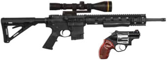 Ambush A11 и Taurus Protector