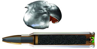 Winchester Ammunition расширяет линию боеприпасов PDX1
