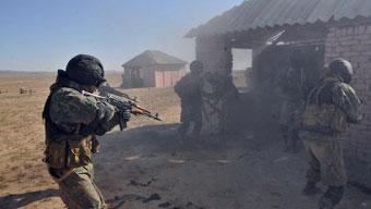 Войска ОДКБ, возможно, вооружат австрийским и израильским оружием