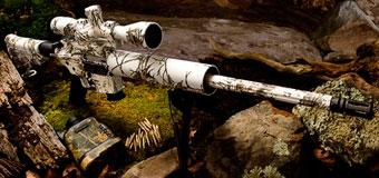 AR-15 калибра 17HMR