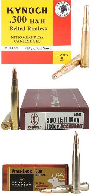 .300 Holland & Holland Magnum