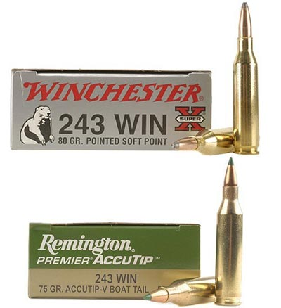 .243 Winchester