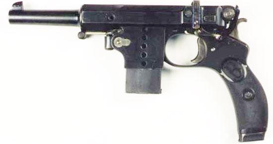 Bergmann 1897 Nº5