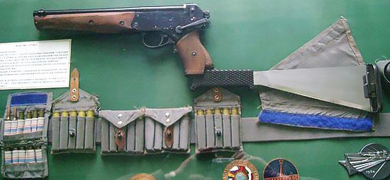 Комплекс СОНАЗ (пистолет ТП-82 с присоединенным прикладом-мачете и штатным боекомплектом)