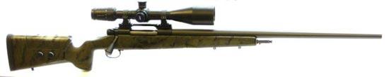 Styria Arms CSR 99