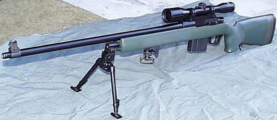 Parker-Hale M85