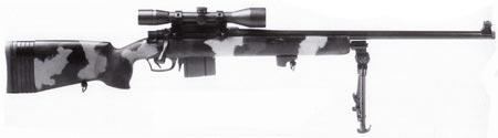 Parker-Hale M85 армейский камуфлированный вариант