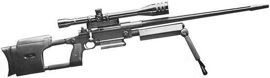RAP / RAI Model 300