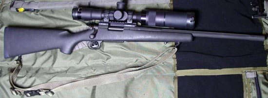 Remington model 700 LTR