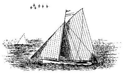 В XVIII–XIX веках крупнокалиберные ружья, промежуточные между свифелем и пантганом, использовали в китобойном промысле