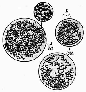 Рис. 3. Дробь после двух выстрелов патронами «Рекорд» (без крахмала): Д - деформированные дробины; П - поврежденные; К - круглые; цифры показывают количество дробин