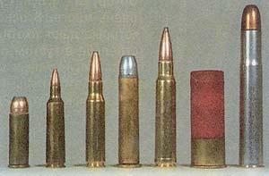 Входе испытаний использовались боеприпасы (слева направо): .44 Magnum, .22-250, .308, .45-70, .338, круглые пули 12 калибра и .470 Nirtro Express. Хотя некоторые пули и превосходили другие, ни на одну из них нельзя было положиться, когда они попадали в ветку.