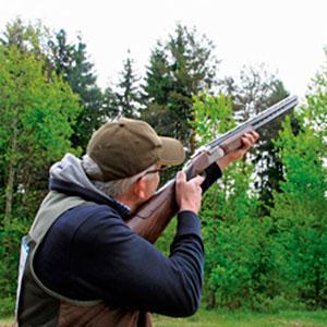 Стендовое ружье. Рациональный выбор