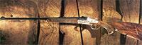 Долгий путь оружейного ореха