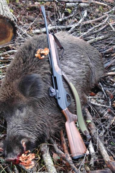 Охотничье оружие Merkel популярно в странах с развитым охотничьим хозяйством