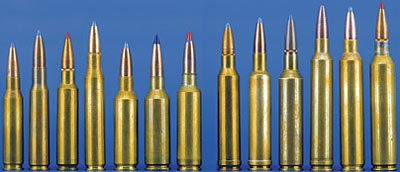 Семейный портрет семёрок: (слева направо) 7mm-08 Rem, 7mm Mauser, .284 Win, .280 Rem, 7mm SAUM, 7.21 Lazzeroni Tomahawk, 7mm WSM, 7mm Rem Mag, 7mm Wby Mag, 7mm Dakota, 7mm STW, 7mm Ultra Mag и 7.21 Lazzeroni Firebird.