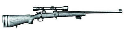 Снайперская винтовка «Паркер-Хэйл» «Модели 82»